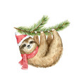 watercolor christmas card cute sloth vector image