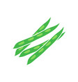 green peas icon template isolated vector image