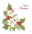 Hellebore flowers mistletoe holly berries isolated vector image vector image