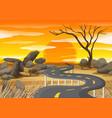 sunset at savanna field vector image vector image