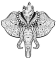 Circus Elephant head doodle on white sketch vector image