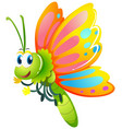 butterfly with yellow and pink wings vector image