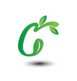 c green leaves letter ecology logo vector image