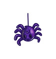 cute cartoon spider on web vector image