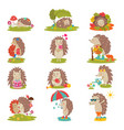 hedgehog cartoon prickly animal character vector image