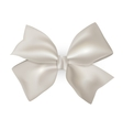 Isolated blue photorealistic silk bow for your vector image vector image