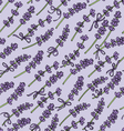 seamless pattern with lavender vector image vector image