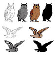 an image of an owl in vector image vector image