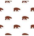 bear pattern seamless vector image vector image