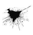black ink drop and splash vector image vector image