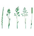 grasses silhouettes vector image vector image