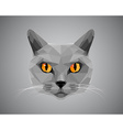 Grey cat with orange eyes - polygonal style vector image