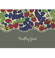 Hand drawn berries frame vector image vector image