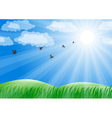Spring landscape with green grass and sun shine vector image vector image