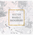 trendy abstract marble background vector image