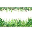 tropical plants horizontal border vector image vector image