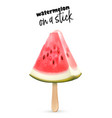watermelon fruit 3d slice ice cream stick vector image