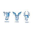 animal logo design set abstract badges with rino vector image vector image