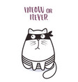 bad cat character for greeting card design vector image vector image