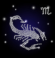 brilliant scorpio zodiac sign vector image