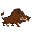 Cartoon angry boar bares ones teeth vector image vector image