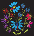 Colour Folk Floral pattern in circle on black vector image vector image