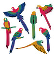 folk patterned isolated parrot set vector image