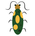 green and yellow bug or color vector image vector image