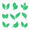 green leaf bio eco organic icons set vector image
