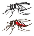 insect mosquito aedes aegypti vector image