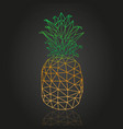 isometric abstract pineapple design vector image vector image
