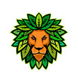 lion with leaves as mane mascot vector image vector image