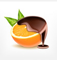 orange fruit with chocolate vector image vector image