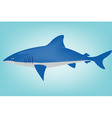 shark in ocean vector image vector image