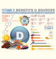 Vitamin d benefits vector image