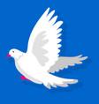 white bird landing vector image vector image