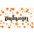 autumn background autumn lettering and falling vector image vector image