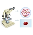 blood under a microscope vector image