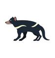 tasmanian devil isolated marsupial wild beast vector image vector image