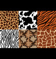 animal skins pattern leopard leather fabric vector image vector image
