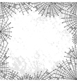 background with spiderweb vector image