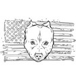 draw in black and white head aggressive vector image vector image