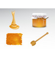 freshly collected honey 3d realistic set vector image vector image