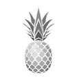 pineapple grunge with leaf tropical exotic fruit vector image