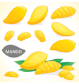 Set of mango in various styles vector image