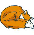 sleeping red fox vector image