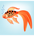 tropical fish vector image vector image