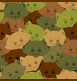 cat army pattern home pet military background vector image