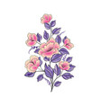 floral background flower rose bouquet isolated vector image vector image