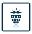 Icon of Raspberry vector image
